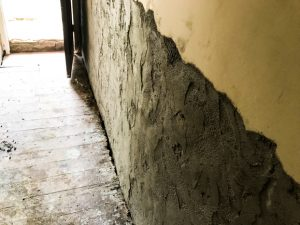 dryzone render damp proofing 003